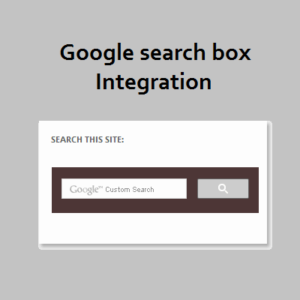 Google search box integration